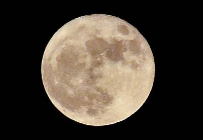 Walter Gantt Wall Art - Photograph - The Moon In Detail by Walter Gantt
