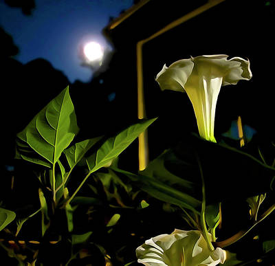 Photograph - The Moon Kisses Its Flowers by Charlie Brock