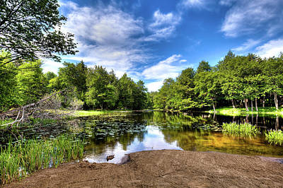 Photograph - The Moose River At Covewood by David Patterson