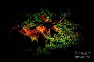 Photograph - The Moose by Steven Parker