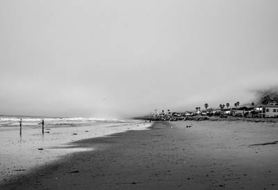 Photograph - The Morning Catch - Malibu California by Gene Parks