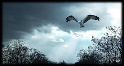 Digital Art - The Hawk by Zedi