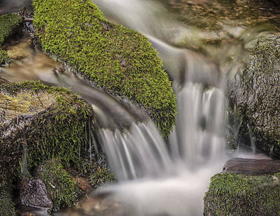 Photograph - The Mossy Devide by Tyson Smith