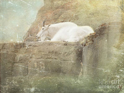 Digital Art - The Mountain Goat by Victoria Harrington