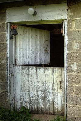 Photograph - The Mr Ed Door by Deb Buchanan