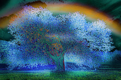 Photograph - The Mulberry Tree In The Rain Abstract Art by Debra and Dave Vanderlaan