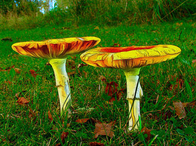 Produce Painting - The Mushroom 8 - Pa by Leonardo Digenio