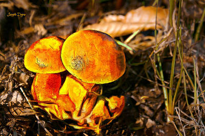 Image Painting - The Mushroom - Painting Over Photo - Pa by Leonardo Digenio