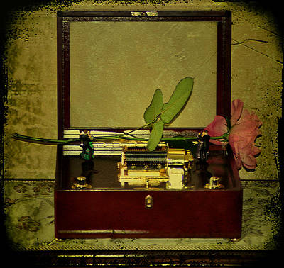 Music Box Photograph - The Music Box by Bill Cannon