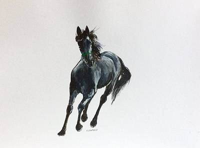 Painting - The Mustang by Ellen Canfield