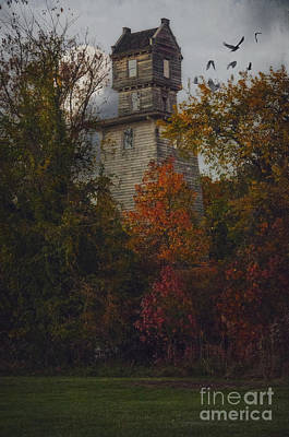 Photograph - The Mysterious Oakhurst Water Tower by Debra Fedchin