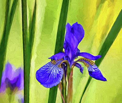 Fleur De Lis Photograph - The Mystery Of Spring 2 - Paint by Steve Harrington