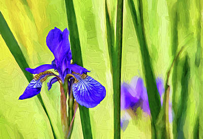 Fleur De Lis Photograph - The Mystery Of Spring - Paint by Steve Harrington