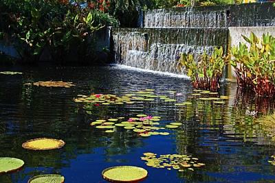 Photograph - The Naples Botanical Garden I by Michiale Schneider