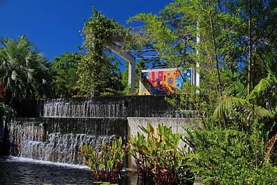 Photograph - The Naples Botanical Garden IIi by Michiale Schneider