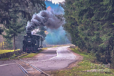 Photograph - The Narrow Gauge Railway - Romania by Claudia M Photography