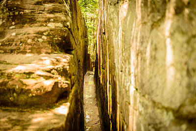 Photograph - The Narrow Path 2 by Michael Scott
