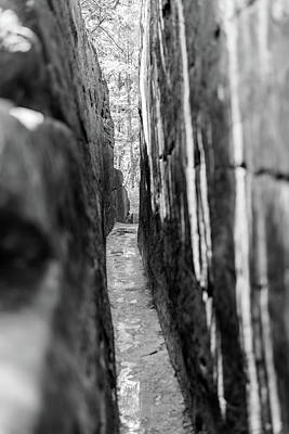 Photograph - The Narrow Path Monochrome by Michael Scott