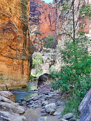 Photograph - The Narrows Of The Virgin River  by Robert Meyers-Lussier