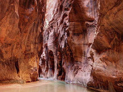 Digital Art - The Narrows Zion National Park Utah  by OLena Art Brand