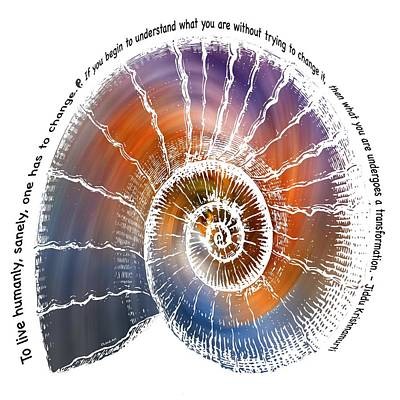 Digital Art - The Nautilus Shell Transparent -  Quote by OLena Art Brand