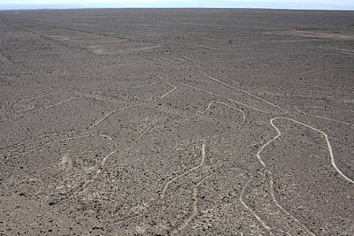 Photograph - The Nazca Lines, Peru by Aidan Moran