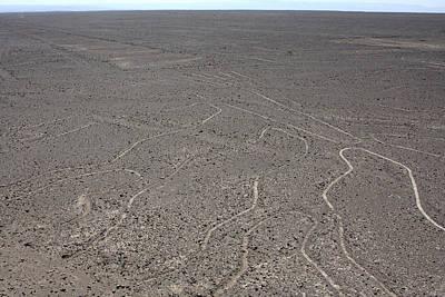 Photograph - The Nazca Lines, Peru by Aidan Moran