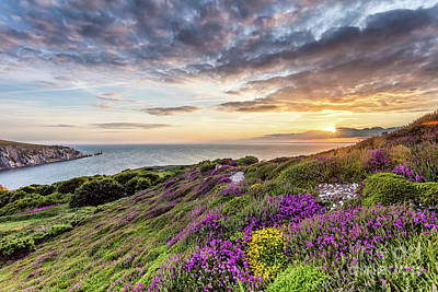 Manateevoyager Photograph - The Needles At Sunset by Wight Landscapes