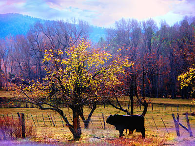 The Neigbor's Bull Where The Delicious Fall El Valle Nm Art Print by Anastasia Savage Ealy