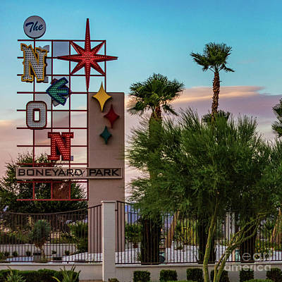 Photograph - The Neon Boneyard by Doug Sturgess