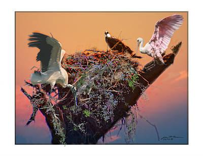 The Nest Art Print by John Breen