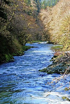 The Nestucca River Art Print by Margaret Hood