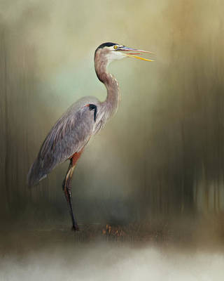 Photograph - The Next Catch by Lana Trussell