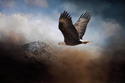 Photograph - The Next Flight by Jai Johnson