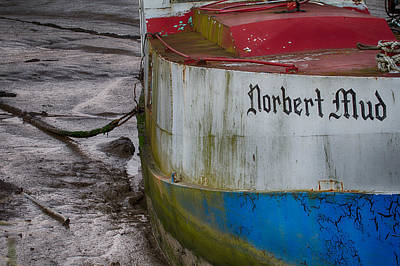 Photograph - The Norbert In The Mud by Leah Palmer