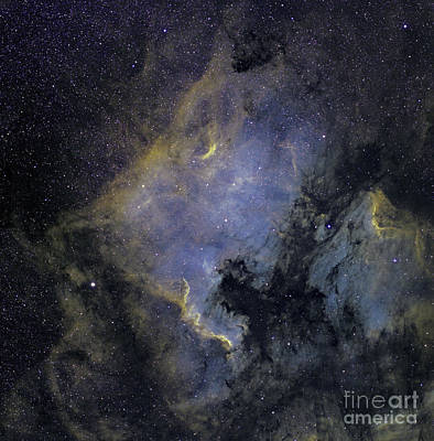 The North America Nebula Art Print by Phillip Jones