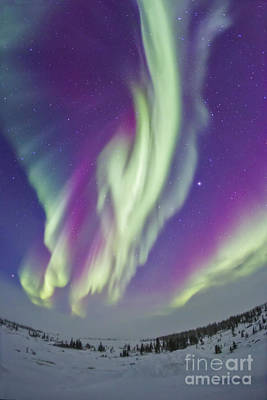Landscapes Royalty-Free and Rights-Managed Images - The Northern Lights In Churchill by Alan Dyer