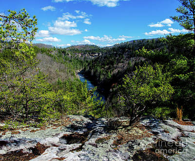 Photograph - The Obed Wild And Scenic River by Paul Mashburn