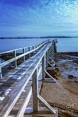 Southern Maine Photograph - The Ocean Is Calling by Elizabeth Dow