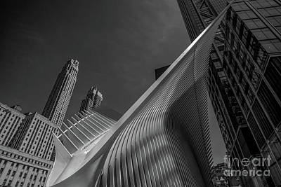 Photograph - The Oculus Nyc Bw by Judy Wolinsky