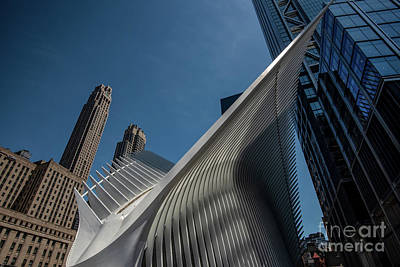 Photograph - The Oculus Nyc by Judy Wolinsky