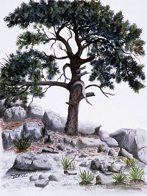 Black Hills Painting - The Offering Tree by Tom Dorsz