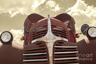 1947 Dodge Truck Photograph - Ol' Dodge by Chellie Bock