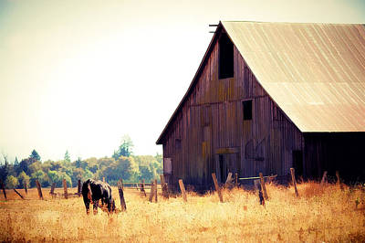 Photograph - The Old Barn by Rebecca Cozart