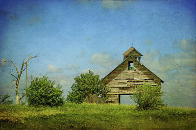 Photograph - The Old Barn by Susan McMenamin