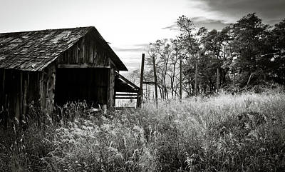 Photograph - The Old Shed by Trance Blackman