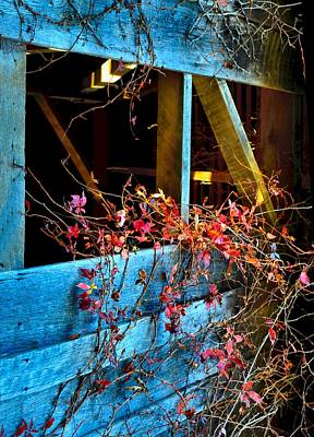 Photograph - The Old Barn Wall by Julie Dant