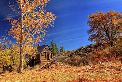 The Old Bunkhouse Landscape Art Print by James Eddy