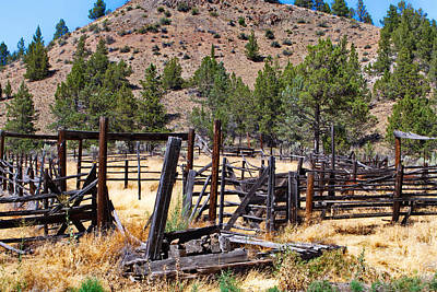Photograph - The Old Corral by Ansel Price