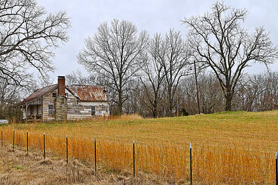 Art Print featuring the photograph The Old Country Home by Ron Dubin